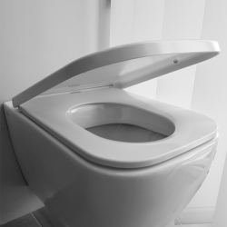 Capace obiecte sanitare
